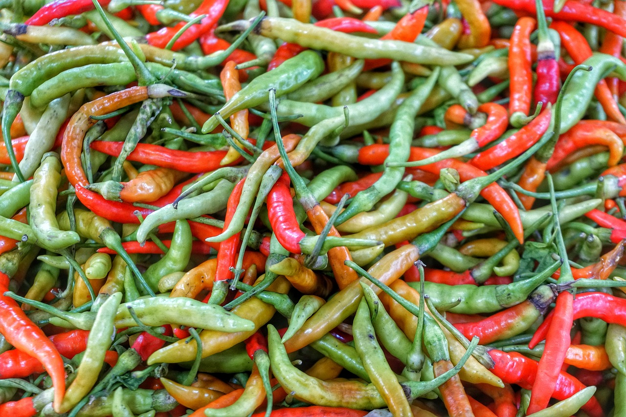Food Discoveries –an Introduction to Guatemalan Food